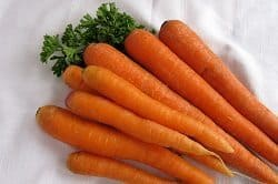 Dog treat Carrots
