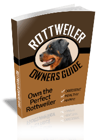 Rottweiler Owners Guide